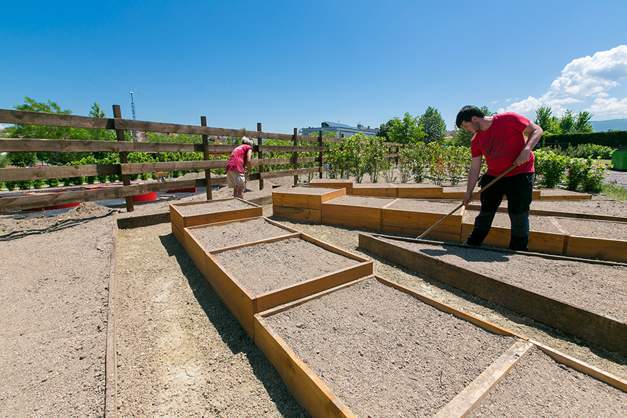 """Los """"Jardines comestibles"""" de Biochef, primer Premio a la Innovación de la Academia Navarra de Gastronomía"""